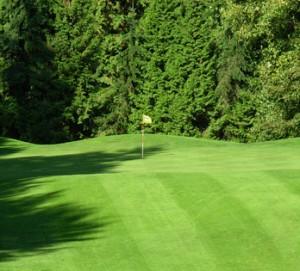 peace-portal-golf-courses